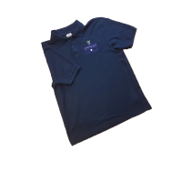 Minsthorpe Polo